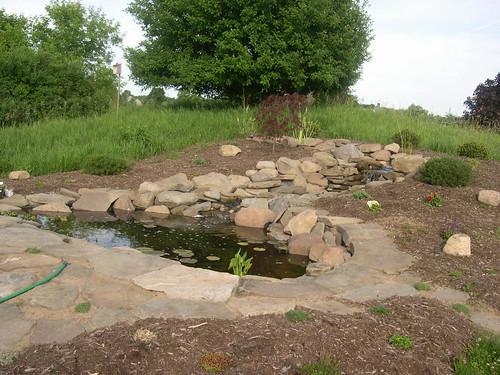 watergarden bradcarlson