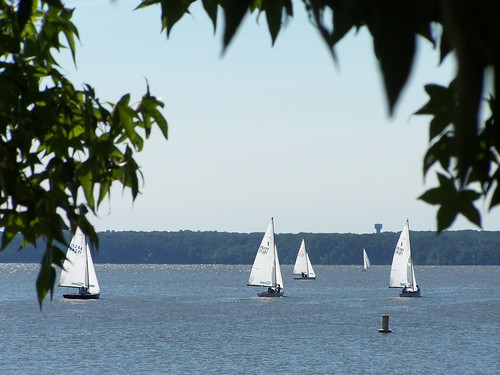 Sailboats on the Potomac