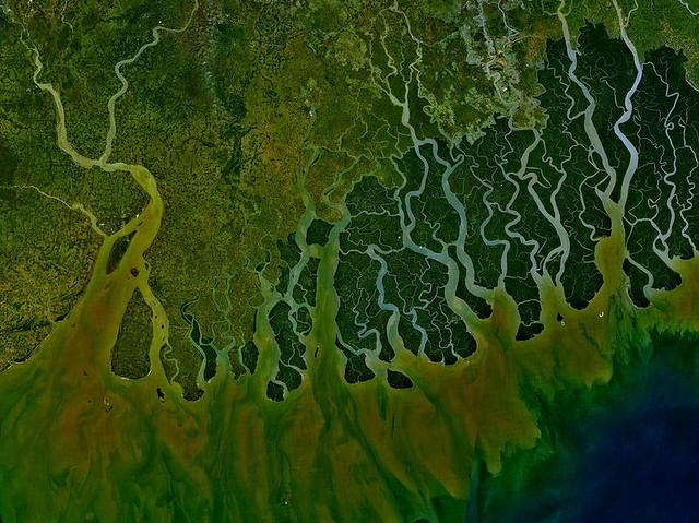 Ganges Delta | Satellite image of the delta. Photo Credit ...