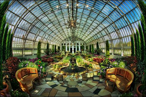 flowers plants como art minnesota gardens architecture garden zoo stpaul conservatory symmetry greenhouse dome twincities saintpaul mn fountian comopark sunkengarden comoparkzoo comozoo marjoriemcneely prettygarden