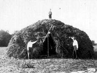 Haystack lean-to