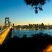 Bridging the Bay by W Mustafeez