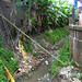 Drainase penuh sampah. : Rubbish accumulation in a drainage ditch. Photo by Ardian
