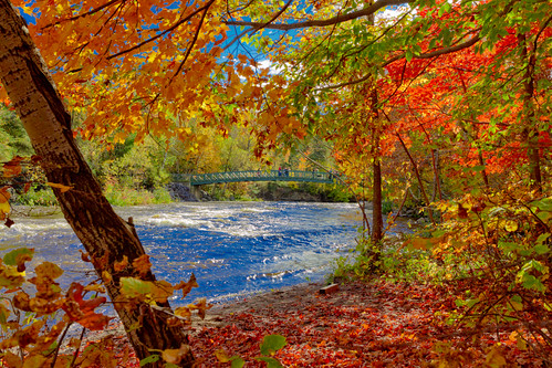 bridge autumn canada automne landscape québec paysage parcchauveau