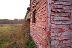 Abandoned farm, outbuilding detail