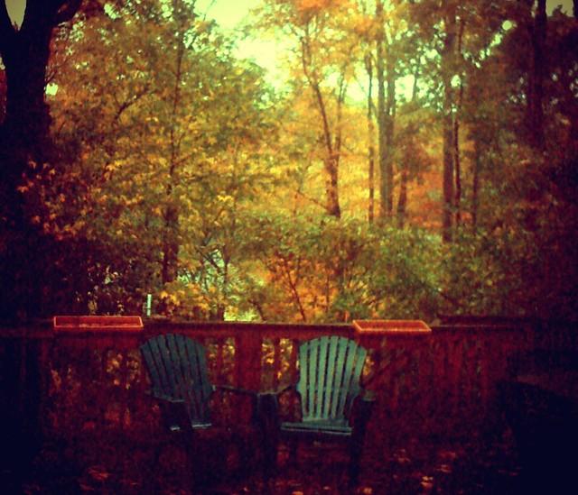 Good Morning Rain. Good Morning Fall.