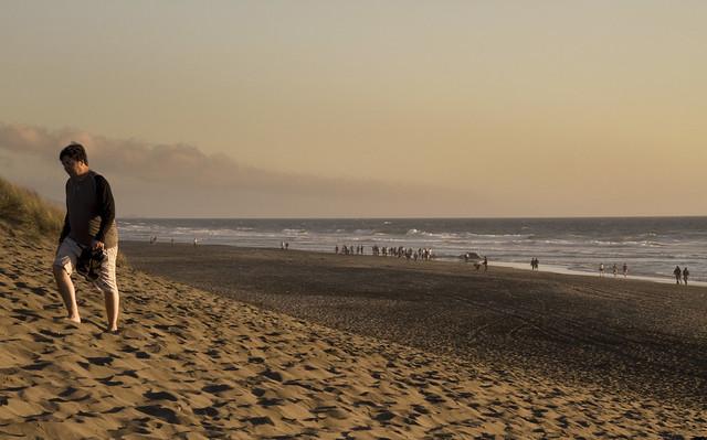 dead whale carcass on ocean beach at sunset; san francisco (2010)
