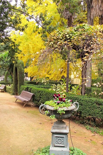 Jardin Botanico -