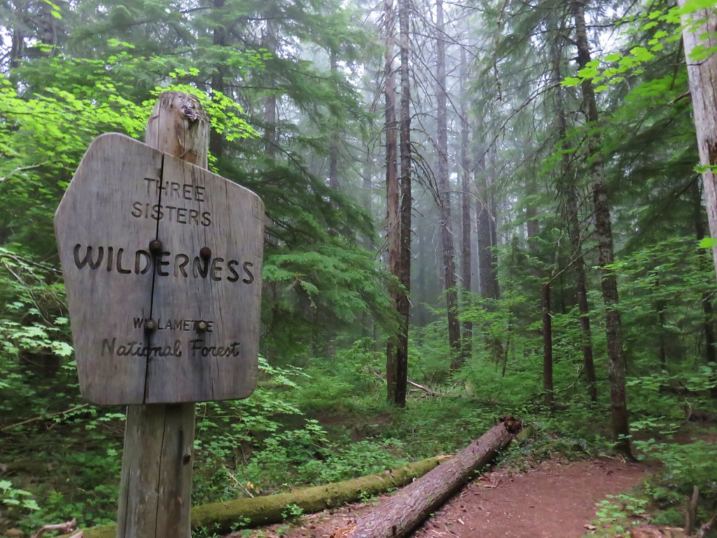 Entering the Three Sisters Wilderness on the Linton Lake Trail