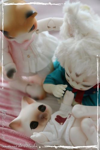 ✰ Ma famille de kitsune (p. 20) - Page 12 35469457722_aaf8625efb