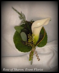 Boutonniere: Galex Leaf and White Calla Lily