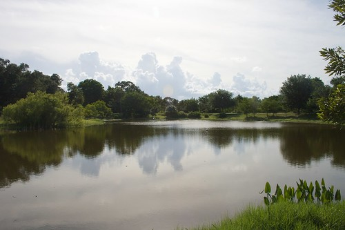 mist water clouds landscape pond ngc freshwater smallwater jensenbeach ilobsterit