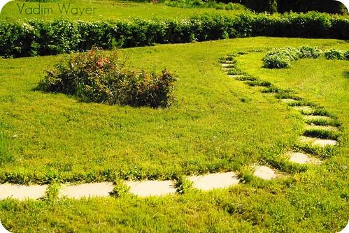 nature дорога природа ботаническийсад томск тропинка