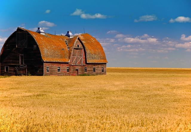Saskatchewan prairie view by CC user 1967chevrolet on Flickr