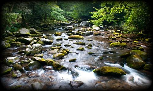 river nationalpark smokymountains