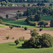 Countryside around Corridonia (Macerata) - Marche, Italy