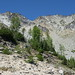Small photo of Leaving the Trail for Saska