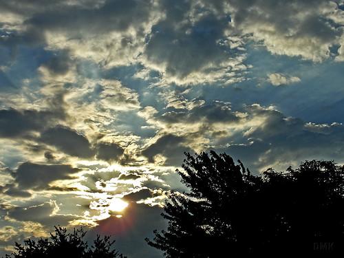 sunrise 2010 dmk