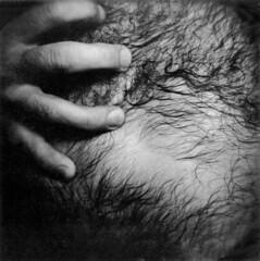 Self Series, 1998 (Analog Archive)