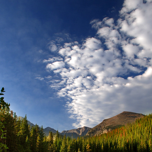 blue sky cloud mountain mountains tree nature leaves clouds landscape rockies leaf nikon colorado colorful background bluesky backgrounds estespark rockymountainnationalpark d80 moosebite jrgoodwin