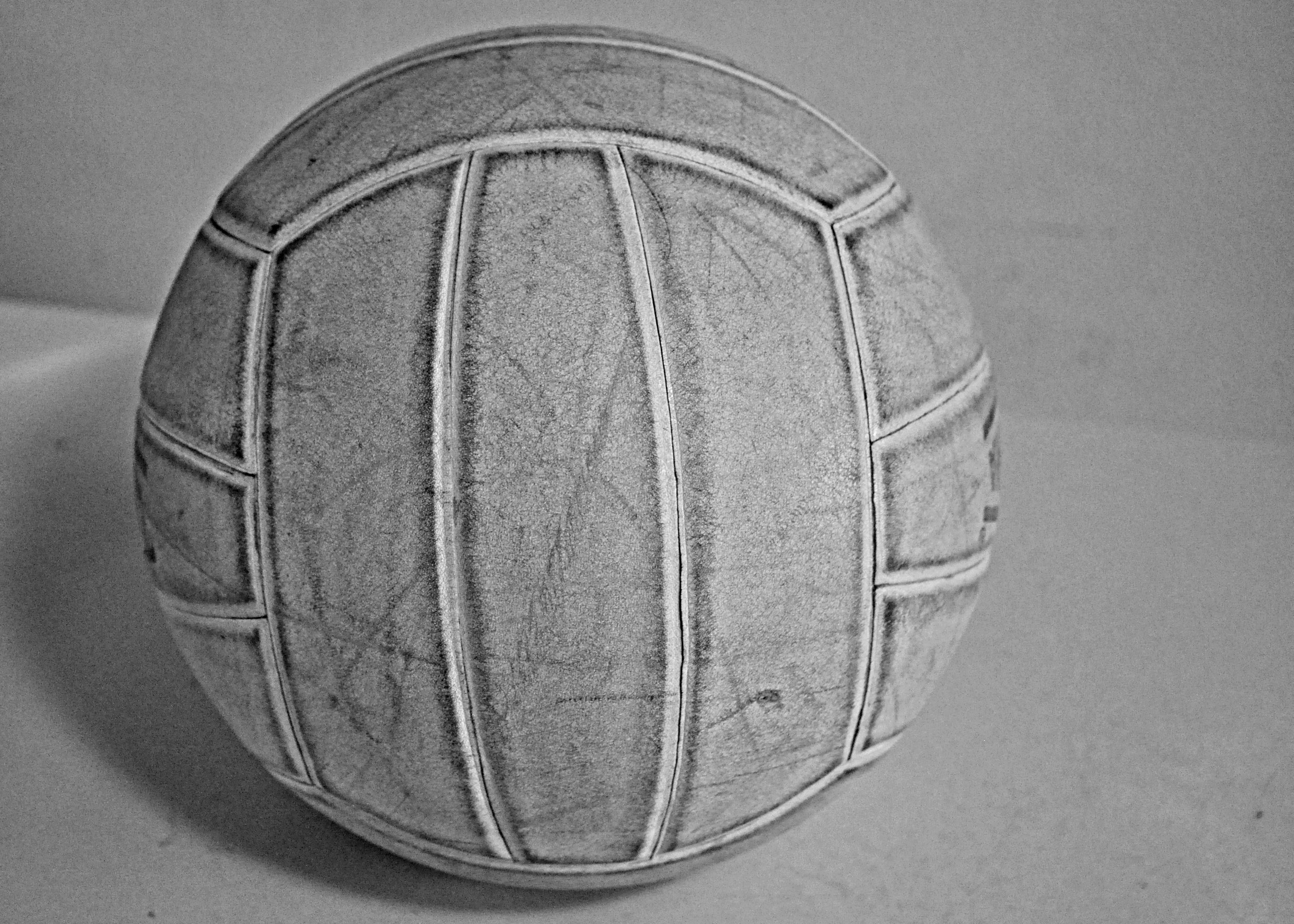 Winning Volleyball to be Immortalized in East Quad