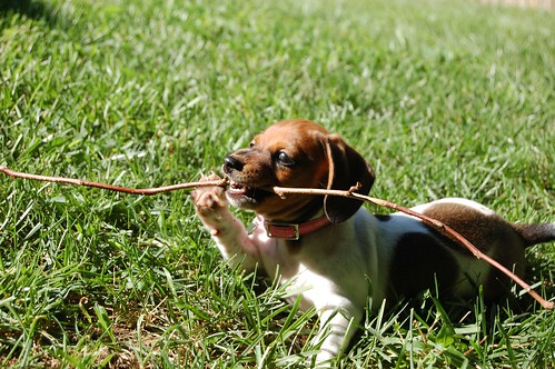Pixel with Stick