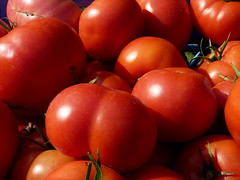 potato and tomato genus, plum tomato, tomato, produce, food,