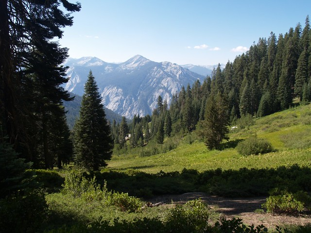 The upper reaches of Upper Tent Meadow.