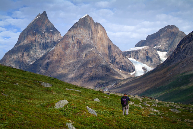 Naturen i Østgrønland06