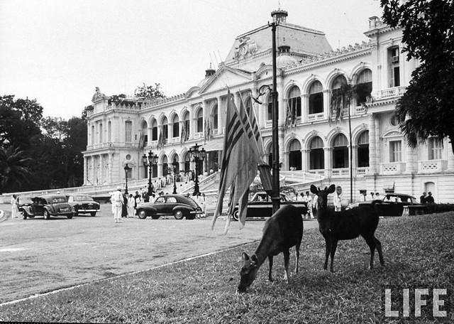 Saigon 1955 (24)