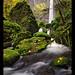 Elowah Falls by pdxsafariguy