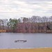 Wiggins Lake:  Nobles Mill Pond Road, Edgecombe County, NC by EdgecombePlanter