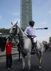 Horse that way