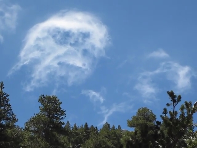 415 Video of clouds growing up above us