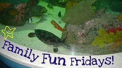 Pepsi Famliy Fun Fridays