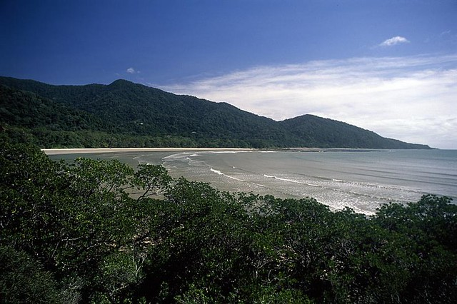 Cape Tribulation. Olympus OM-1, Fuji Velvia 50, 35mm Slide Film.