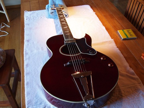 Fret Polishing | by -MikeyP-