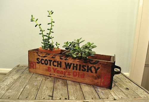 Vintage Wooden Crate Drawer Scotch Whisky Wood Box