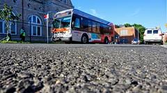 WMATA Metrobus 2012 Orion VII 3G HEV #3077
