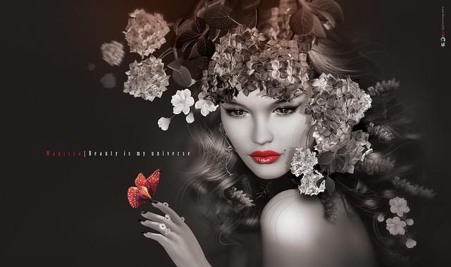 M A G I S S A .:. Pιℓє Uρ .:. Beauty is my universe