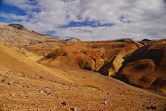 Colourful landscape