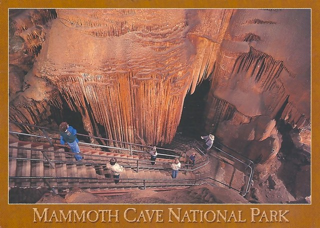 mammoth cave catholic singles Home / maps / national geographic trails illustrated maps, singles (atlantic region) national geographic trails illustrated maps mammoth cave national park.