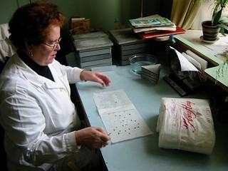 March 2002 N.I.Vavilov Research Institute of Plant Industry (VIR) Saint Petersburg.