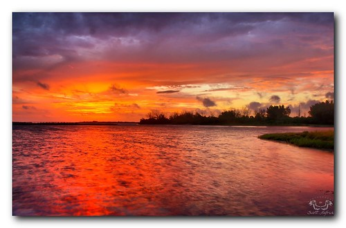 park wild sun color nature beautiful sunrise florida hdr ftdesoto blueribbonwinner scotthelfrichphotographycom