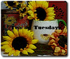 Tea on Tuesday, Sunflowers and Stuff