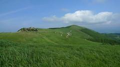 Mount Oishi(生石山)