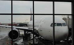 tourist attraction(0.0), hangar(0.0), boarding(0.0), cargo(0.0), airline(1.0), aviation(1.0), airliner(1.0), airplane(1.0), airport(1.0), vehicle(1.0), transport(1.0), jet bridge(1.0), jet aircraft(1.0), aircraft engine(1.0),