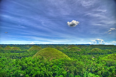 Bohol In A Day Adventure