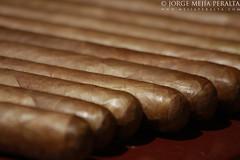 cigar, close-up, cuisine, snack food,