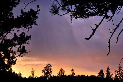 morning autumn trees sky clouds sunrise